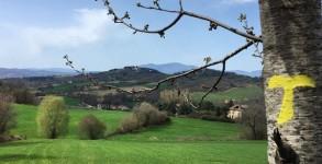 Le Chemin d'Assise en Italie