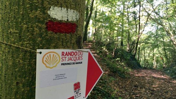 La Rando du Saint Jacques 2018