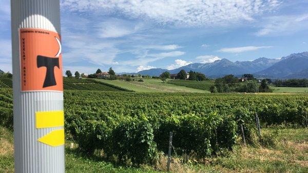 Vignobles près de Montmelian