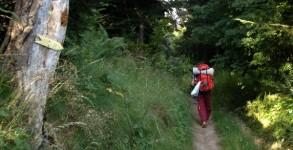 Femme seule sur le chemin de Saint Jacques