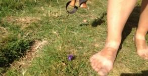 Vers Compostelle à pieds nus