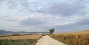 Camino Vasco del Interior