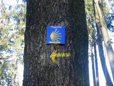 Balise en Forêt de Preuss