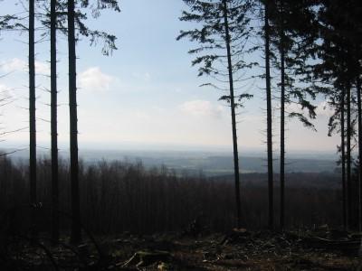 Panorama vers la Belgique en forêt de Preuss