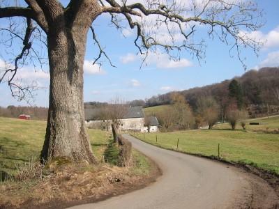La campagne près de Birken