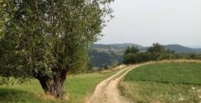 Via Gebennensis