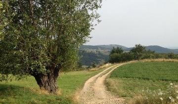 Via Gebennensis : mon chemin de l'été 2012