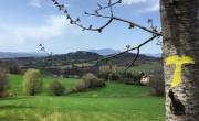 Sur les pas de St François d'Assise en Italie
