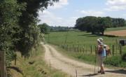 Mon expérience du Chemin de Saint Jacques